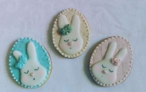 Easter biscuits - bunny D